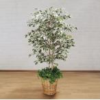 スターライト (人工観葉植物 造花 110cm)