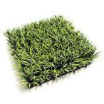 人工芝 グラスマット (リュウノヒゲ 造花 人工草 劣化防止 難燃UV加工商品)