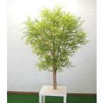大型サイズ 明るい葉のトネリコ立ち木 高さ180cm(フェイク グリーン 人工観葉植物 造花 樹木 造木)