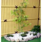 青竹 (造花 人工観葉植 バンブー 和風 ガーデニング 造園 庭園 坪庭 エクステリア 100cm)