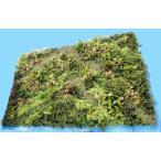 壁面緑化パネル グリーン(6分割 大型 目隠し イミテーション 造花 フェイク 装飾)