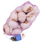 スペイン産 エルサント アホモラード(紫にんにく) 約1kg
