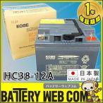 日本製 HC38-12A JIS規格 小型制御弁式鉛蓄電池 バッテリー HCシリーズ 電動車椅子 セニアカー ミニアカー 無人搬送車 日立化成 ソーラーシステム スイーパー