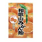 【川口製菓】和歌山みかん飴 100g×1袋 和歌山有田の伊藤農園みかん果汁使用 みかんピール入り