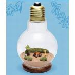 ムーミン Light Bulb テラリウム #4 スナフキン&ティーティ・ウー[リーメント]《発売済・在庫品》