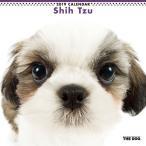 Yahoo!あみあみ Yahoo!店THE DOG カレンダー シーズー (2019年)[アーリスト]《取り寄せ※暫定》