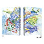 BD 聖戦士ダンバイン Blu-ray BOX II 特装限定版[バンダイビジュアル]【送料無料】《09月予約》