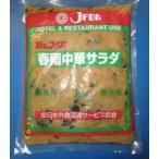 ジェフダ 春雨中華サラダ 1kg<少量在庫>