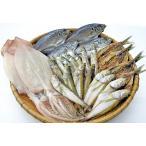 日本海の新鮮な魚を一夜干しに!漁師直結!厳選一夜干しセット