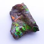 アンモライト かけら 欠片 標本にどうぞ パワーストーン お守り 天然石 化石 1553