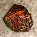 アンモライト かけら 欠片 標本にどうぞ パワーストーン お守り 天然石 化石 L1701
