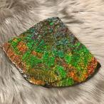 アンモライト かけら 欠片 標本にどうぞ パワーストーン お守り 天然石 化石 L1704