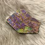 アンモライト かけら 欠片 標本にどうぞ パワーストーン お守り 天然石 化石 L1707