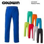 スキーウェア Radicalパンツ GOLDWIN(ゴールドウィン)G31503P 2015/2016