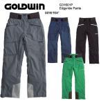 ショッピングスキーウェア スキーウェア パンツ/GOLDWIN ゴールドウィン Eddgyride G31601P(16/17)