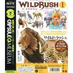 ワイルドラッシュ WILD RUSH 第1章 アフリカ・サバンナ編 全5種セット