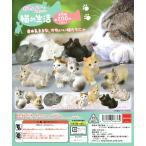 かわいいかわいい猫の生活 全8種セット ガチャガチャ