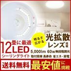 シーリングライト 12畳 LED 天井照明 調光 昼光色 ルミナス IZM-12RD