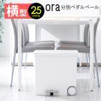 oraオルア ヨコ型 ゴミ箱 25L 日本製