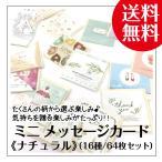 ミニ メッセージカード セット 名刺サイズ 64枚セット 封筒付き ナチュラル