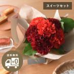 2017 母の日のお花 Merci 選べるギフトセット【送料無料】