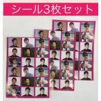 ★送料無料★ チャンヒョク JANG HYUK チャン・ヒョク  ハガキサイズ シール 3枚セット ステッカー 韓流 グッズ ip002-1