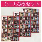 ★送料無料★ チャスンウォン チャ・スンウォン  ハガキサイズ シール 3枚セット ステッカー 韓流 グッズ ip003-1