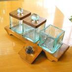 ショッピング雑貨 ガラスの小物入れ マルチケースMサイズ ナチュラル アジアン雑貨 バリ雑貨 エスニック おしゃれな ガラス皿