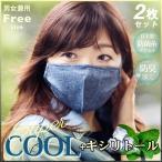 キシリトール 防菌マスク 防臭 涼しい 夏用 冷感マスク デニム 接触冷感 マスク 2枚入り