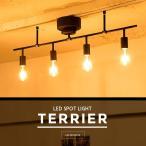 【LED電球付き シーリングライト 4灯 TERRIER(テリア) LED対応 6畳 8畳 ひとり暮らし】