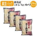 お米 白米 新潟産コシヒカリ(真空パック)20kg(5kgx4袋)(平成30年産)