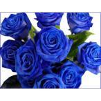バラ  青いバラ ブルー ローズ 10本以上から 花束 アレンジメントに  ギフト 誕生日の花 薔薇 プレゼント