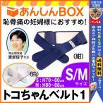 【540円スプーン付&P8倍】トコちゃんベルト1(S/M)【青葉正規品】