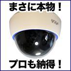 ダミーカメラ/屋内ドーム 1台 防犯カメラ