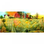 おもちゃ ジグソーパズル 1000ピース 輸入品Quilting the Land 1000pc Jigsaw Puzzle by Doug Knutson