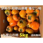 訳あり 和歌山県産 種なし柿 5kg 送料無料(北海道、沖縄県除く)