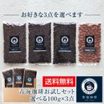 送料無料 コーヒー・アーモンドお試しセット 青海珈琲 ブレンドコーヒー 選べる100g×3点セット ブレンド・アイスコーヒー・ダーク・マイルド・焙煎アーモンド