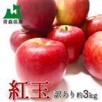 りんご 紅玉 訳あり  わけあり 青森県産 フルーツ 3kg 約15個  平成30年度産 送料無料