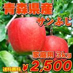 セール 送料無料 訳あり_青森りんご_ふじ_約3kg(約10個入り)賞味期間が長い人気のりんごです!