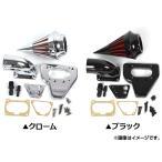 2輪 AP スパイクエアクリーナーキット ホンダ VTX1800 2002年〜2009年 選べる2カラー AP-BP-T234