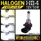 バイク 車検 ヘッドライト 2灯の画像