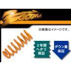 zoom/ズーム 200kgf/mm^2 ダウンフォース 1台分 トヨタ/TOYOTA シエンタ NCP85G 1NZFE H15/9〜 4WD