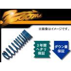 zoom/ズーム 200kgf/mm^2 スーパーダウンフォースC フロント 日産/ニッサン/NISSAN サニー B120 A12 S48/10〜 トラック R・ブロック