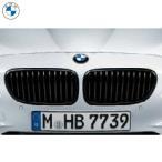 BMW M Performance ブラック・キドニー・グリル(F10/F11)