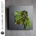 インテリアグリーン ボタニカルフレーム ルメン 黒 / フェイクグリーン 多肉植物 観葉植物 壁掛け インテリア