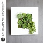 インテリアグリーン ボタニカルフレーム ルメン 白 / フェイクグリーン 多肉植物 観葉植物 壁掛け インテリア