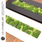 インテリアグリーン モスフレーム Crop Moss 長方形 黒 / プリザーブドフラワー 壁掛け 父の日 盆栽 苔 コケ