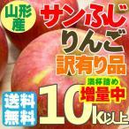 【送料無料】[訳あり品]ご家庭向け完熟りんご「サンふじ」10K以上![11月中旬頃より出荷]