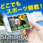 StationTV モバイル テレビチューナー PIX-DT355-PL1