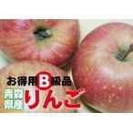 【B級品・ ふじ・10kg(10キロ)・ダンボール詰】わけあり・青森県産